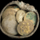 A treasure trove of 24 gold coins and a gold earring discovered in a well-hidden bronze pot during ongoing excavation and conservation work in the ancient harbor of Caesarea. Found among the hoard of Fatimid dinars are six extremely rare 11th century Byzantine coins. Photo © Israel Antiquities Authority.